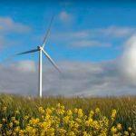 Un APPELLO a favore dell'energia eolica