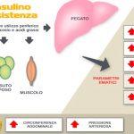 Diagnosi della sindrome da insulino-resistenza